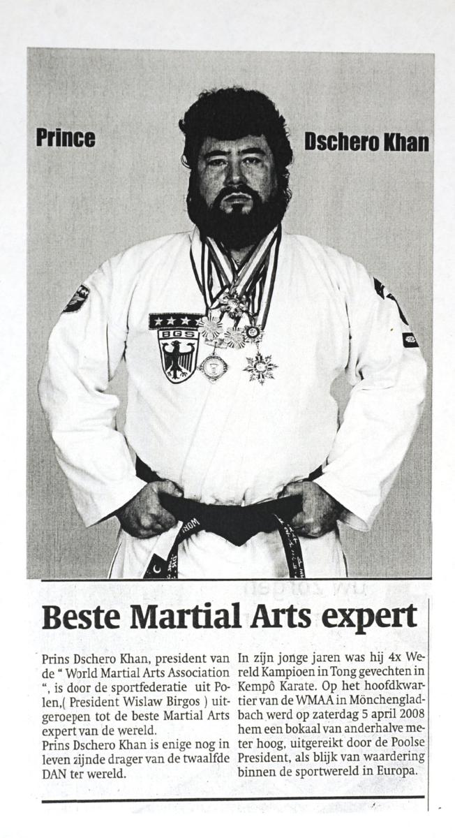 best martial arts expert 5962